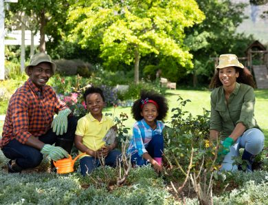 6 choses à faire maintenant si vous voulez un jardin fabuleux ce printemps